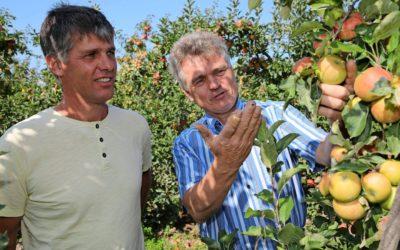 Bio-Bauern wollen Landkreis Heilbronn zur Musterregion machen